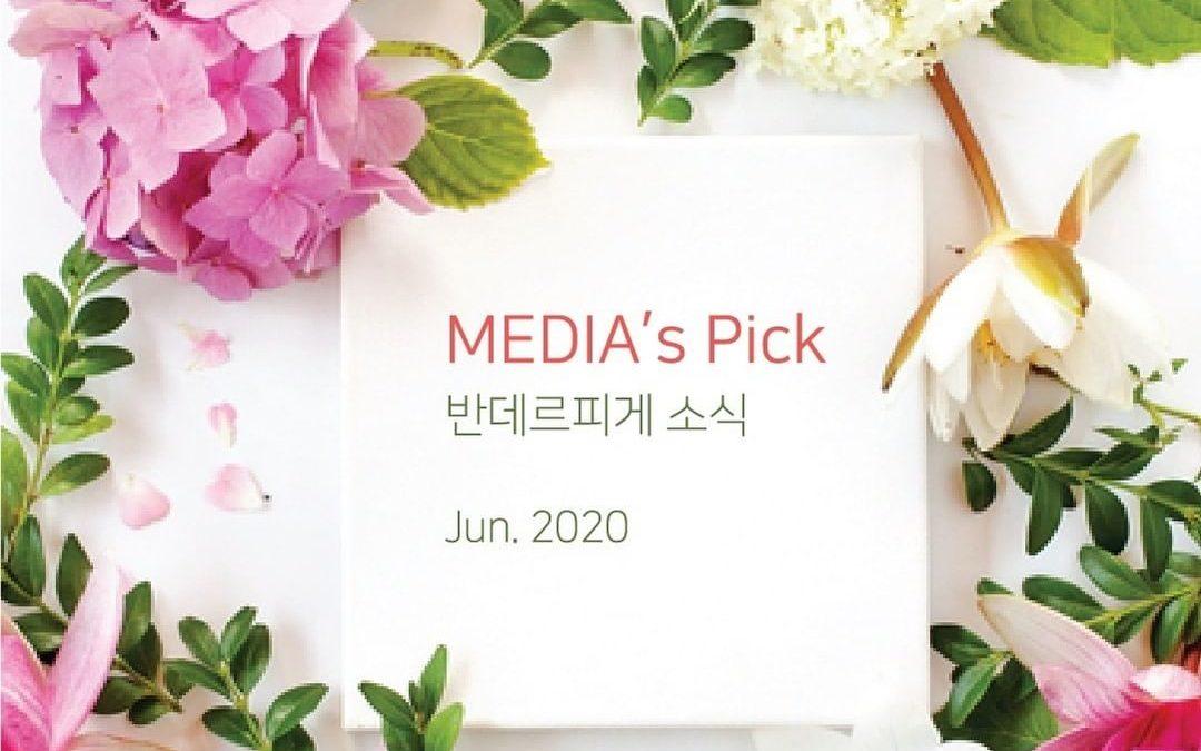 MEDIA's Pick! _JUNE.2020